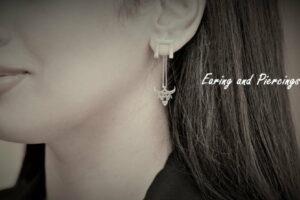 Earing and Piercings 1